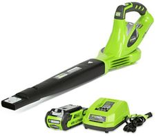 Greenworks 150 MPH Variable Speed Cordless Leaf Blower, Battery and Charger Included 24252 Variable Speed Motor, Cordless Tools, Leaf Blower, Garden Accessories, How To Run Longer, Lawn And Garden, Garden Tools, Lawn Mower, Outdoor Gardens