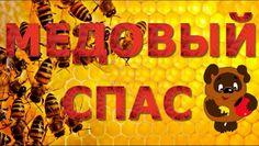 #МедовыйCпас - праздник медовый спас! Поздравляю! #videokanal