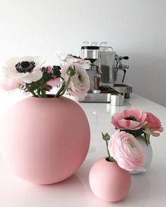 """Ranunkeln Anemonen und eine rosa Rose """"für das süße blonde Mädchen"""" aka Leonard"""