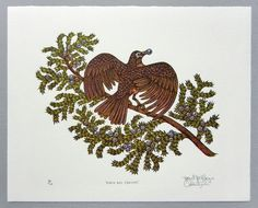 "Woodcut Print Woodblock Print Robin and by tugboatprintshop - ""ROBIN AND JUNIPER""  8"" x 10"" Color Woodcut Print on Ivory Somerset Paper Tugboat Printshop (Paul Roden & Valerie Lueth), 2013."