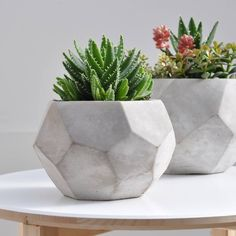 geometric garden pots - Google Search