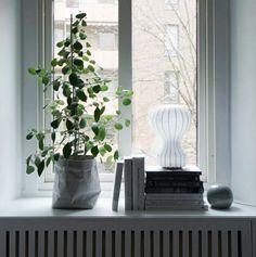 . Zen Home Decor, Window Ledge, Welcome To The Jungle, Beautiful Interior Design, Window Styles, Interior Plants, Nordic Design, Interior Architecture, Beautiful Homes