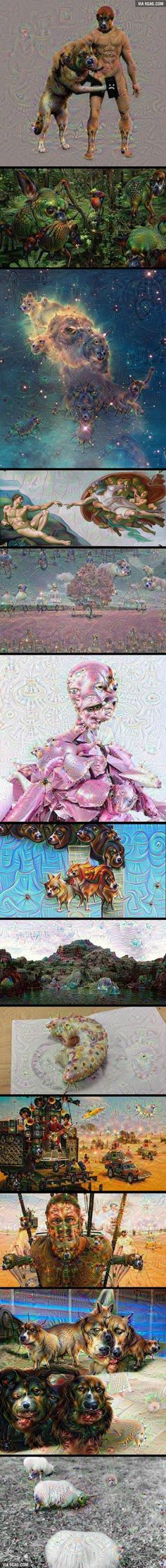 These are the best images from Google's Deepdream software