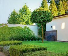 Проект мини-сада | Проекты садов | Журнал «Дом и сад»