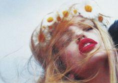 daisy//red