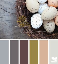 Egg-based tones - would be nice for the living room!