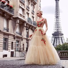 ffcb302d4377e 401 Best Beauty Prom Dress images in 2016 | Bridal gowns, Alon livne ...