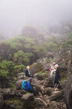 Kilimanjaro / Ren Yagolnitzer