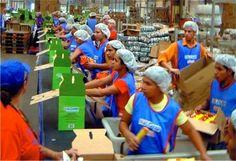 Pregopontocom @ Tudo: OIT: melhores condições de trabalho levam a maior ...  De acordo com a organização, países em desenvolvimento e as economias emergentes que investiram em trabalho e melhorias nas condições de emprego amorteceram a crise financeira de 2008 e tiveram maior crescimento econômico.