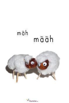 Eine gewisse Ähnlichkeit mit Shaun, dem Schaf lässt sich bei unseren…