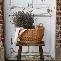 Lovely French lavender