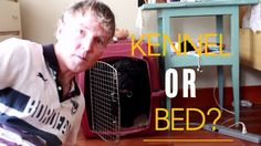 Video Dog in Kennel or The Bed?