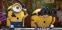 [VÍDEO] Los @Minions regresan en @DespicableMe 3...