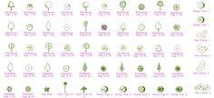 Dwg Adı : Ağaç plan ve görünüş autocad çizimleri  İndirme Linki : http://www.dwgindir.com/puanli/puanli-2-boyutlu-dwgler/puanli-bitki-ve-agaclar/agac-plan-ve-gorunus-autocad-cizimleri.html