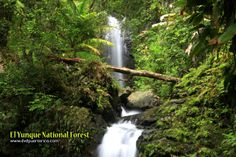 pictures of puerto rico   images of rico memories of ponce turismo tourism wallpaper video ...