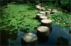 some zen skipping stones. yesssssssss
