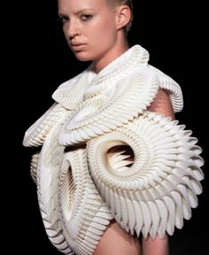 architectural fashion...  by:  Iris Van Herpen