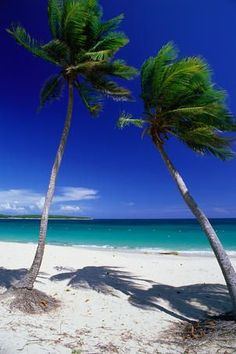 Travel Inspiration for Puerto Rico - Culebra vs Vieques: Puerto Rico's contrasting islands - Lonely Planet