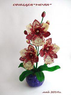 """Орхидея""""Мечта"""""""