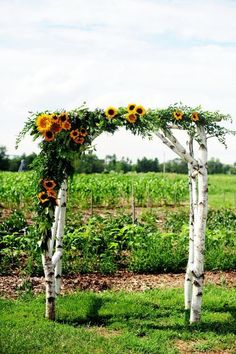 rustic sunflower birch wedding arch / http://www.himisspuff.com/country-sunflower-wedding-ideas/3/