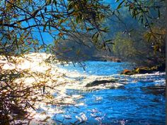 tamega  rio   2014  setembro.jpg