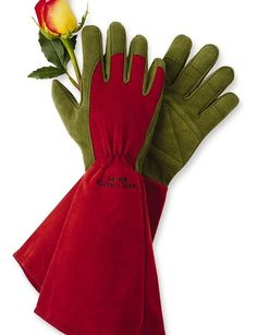 Garden gloves - long cuffs!