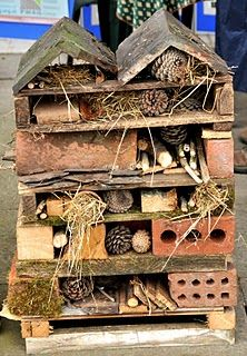 A Bug Hotel! Invite the beneficial kind of bugs into your g.- A Bug Hotel! Invite the beneficial kind of bugs into your garden to do the dirt… A Bug Hotel! Invite the beneficial kind of bugs into your garden to do the dirty work.