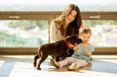 Acredite que são mais do que aquilo que imagina :) #cães #cachorros #animais #dogs #animals