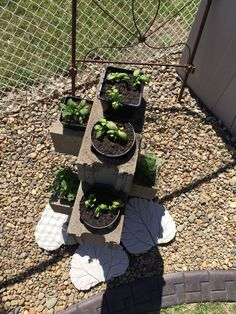 Cinder Block Herb Garden | Hometalk - I think I will paint the cinder blocks some pretty colors!