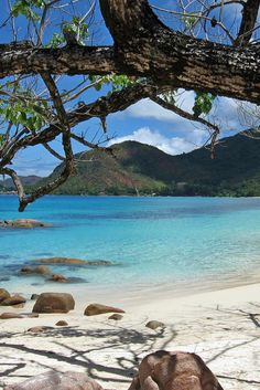 7 Reasons Why You Should Visit Seychelles