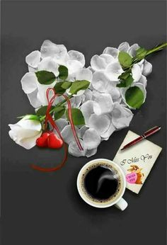 Good Morning Love, Good Morning Wishes, Good Morning Images, Beautiful Rose Flowers, Love Rose, Coffee Love, Coffee Cups, Tea Cafe, Splash Photography