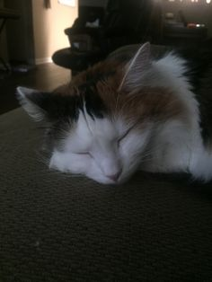 She looks so innocent when she's asleep
