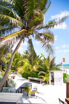 The Real Coconut Tulum at Sanará Resort Luxury Restaurants of the World Most Beautiful Beaches, Beautiful Hotels, Beautiful Gardens, Riviera Maya, Best Hotels, Luxury Hotels, Fine Hotels, Top Hotels, Tulum Hotels