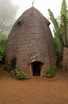 iseo58:  A traditional Dorze beehive homestead at Checha, Ethiopia, Adam Lees