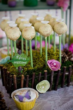 Tinkerbell fairies woodland birthday party cake pops! See more party planning ideas at CatchMyParty.com!
