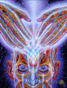 Experience a psychedelic and visionary journey through the metaphysical and spiritual anatomy of the self, and let Alex Grey help you discover your divinely illuminated core. Click through to see the most recent edition! Psychedelic Art, Alex Grey Paintings, Oil Paintings, Alex Gray Art, Tenacious D, Nova Era, Psy Art, Kahlil Gibran, Process Art