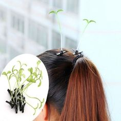 Unisex-Women-Child-Boy-Girl-Cute-Lovely-Bean-Sprout-Grass-Hair-Clip-Lot-Hairpins