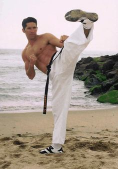 Num faz o Steven Seagal. Karate, Jiu Jutsu, Michael Jai White, Scott Adkins, Martial Arts Techniques, Martial Arts Workout, Marilyn Monroe Art, Martial Artists, Actrices Hollywood