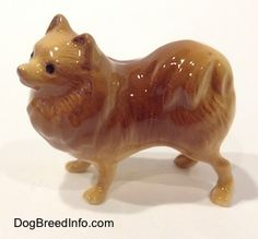 Collectable Vintage Pomeranian Dogs - own this, absolutely adorable. Has a smarmy look on its face.
