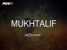 This article is a collection of 33 beautiful words in Urdu that one should start using more often in their lives.