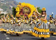 Sunflower girls #madeira #secretmadeira