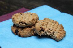 Decadent Peanut Butter Chocolate Chip Cookies: Gluten, dairy, and refined sugar free! Food For Thought, Chocolate Chip Cookies, Sugar Free, Peanut Butter, Dairy, Gluten, Creative, Desserts, Tailgate Desserts