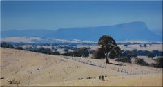 Australian landscape paintings by John Wilson. – Alternative Home John Wilson, Wilson Art, Australian Painting, Australian Artists, Painting Gallery, Artist Gallery, Landscape Art, Landscape Paintings, Oil Paintings