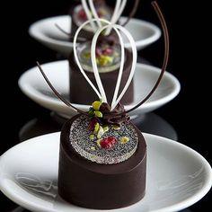"""Chocolate praline filled with salted caramel & nut crunch. Gourmet Desserts, Fancy Desserts, Fancy Cakes, Mini Cakes, Plated Desserts, Dessert Recipes, Dessert Presentation, Decoration Patisserie, Pastry Art"