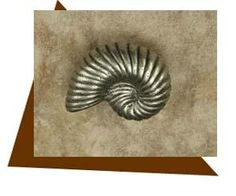 Anne At Home Nautilus Cabinet Knob-Medium-Left Standard 8/32 x 7/8