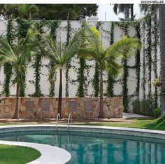 Conduzida por fios de náilon, a tumbérgia é uma trepadeira de crescimento rápido, perfeita para cobrir muros altos, como este de 6 m em projeto do paisagista Gilberto Elkis.