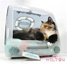 old tvs turned into cat houses - Yahoo Image Search Results