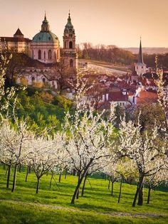 Petřín garden and St. Nicholas church in Prague, Czechia