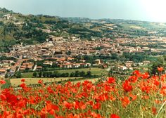 FOSSOMBRONE - Marche, Italy