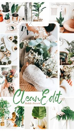 Clean Edit - Mobile Lightroom Presets #lightroompresets #cleanedit #lrpresets #clean #minimalist #green Family Color Schemes, Vsco Filter Bright, Bright Background, Camera Settings, Photography Editing, Warm Colors, Lightroom Presets, Cleaning, Adobe